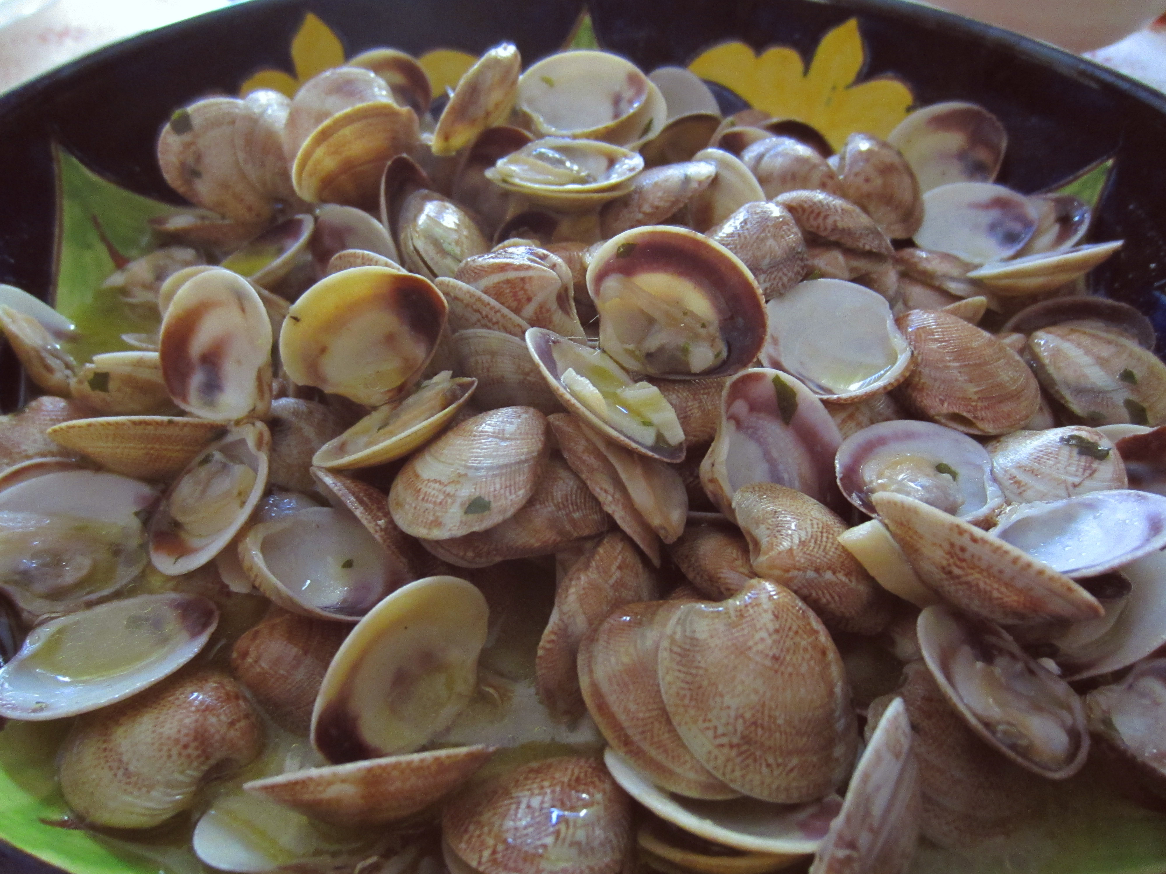 Almejas al vapor degustame for Cocinar almejas al vapor